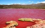 Danau Chile